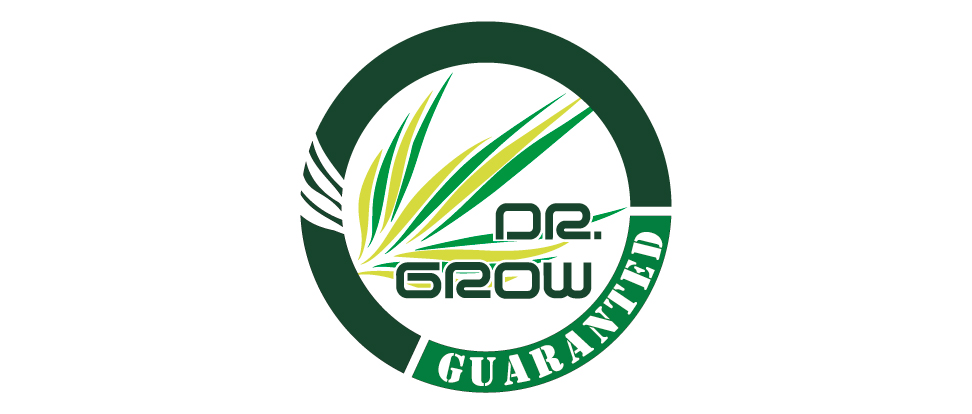 Marca Visual Dr Grow